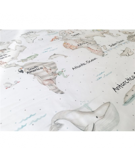 """World map gray"" Rug"